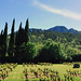 panorama_candelon_hostellerie